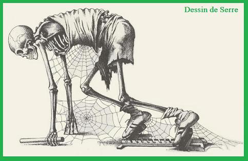 Sport squelette