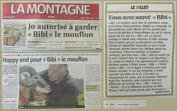 BiBi le Mouflon