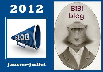 BIBI-BLOG