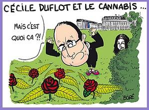 Hollande-Duflot-Cannabis-depenalisation