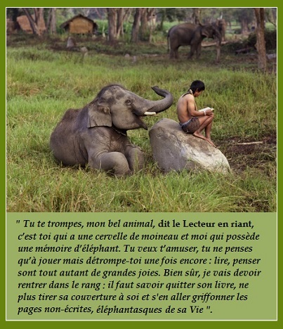 LECTURE-éléphantasque
