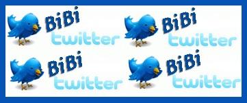 bibi-twitter