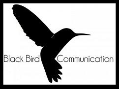 black-bird-