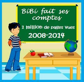 BiBi-fait-ses-comptes 2014