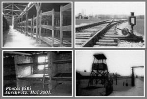 Photos Auschwitz