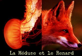 banniere_blog2