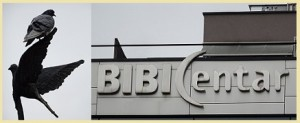 Bibi centar 3