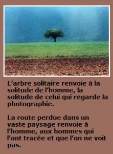 Abbas+Kiarostami.arbre.solitaire